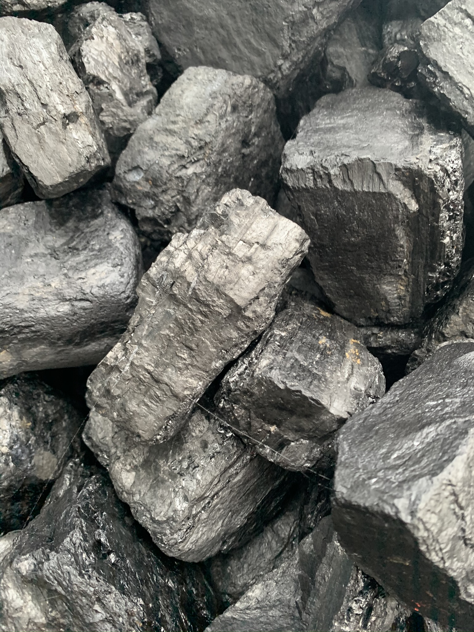 Coal Online